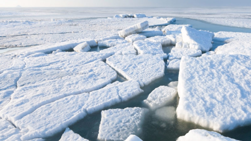 Arctic Sea Ice - Beaufort (Photo credit Melniskof Shutterstock)